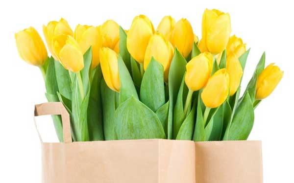 Тюльпаны из бумаги своими руками фото 392
