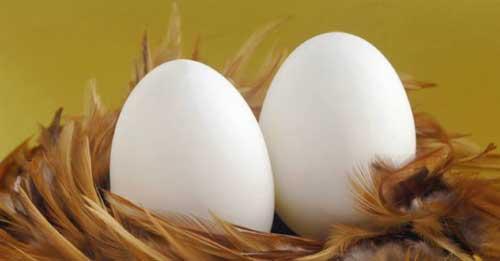 Фото К чему снятся яйца с кровью
