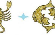 Скорпион и рыбы совместимость