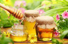 Польза и вред мёда для организма