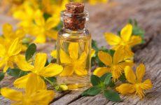 Полезные свойства и применение травы зверобой, рецепты приготовления и противопоказания