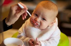 Уход и развитие ребенка в 9 месяцев, особенности питания: меню, режим, рацион, искусственное и грудное вскармливание