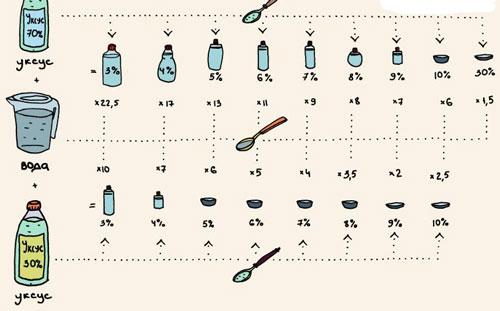 Очиток цветов лечебные свойства 46