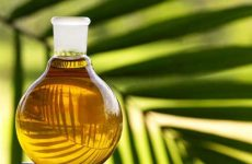 Польза и вред пальмового масла в продуктах и косметике