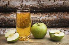Как сделать яблочный сидр в домашних условиях?