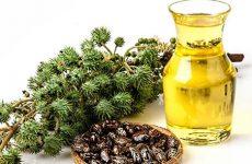 Касторовое масло: использование его полезных свойств в народной медицине и косметологии, ограничения к применению