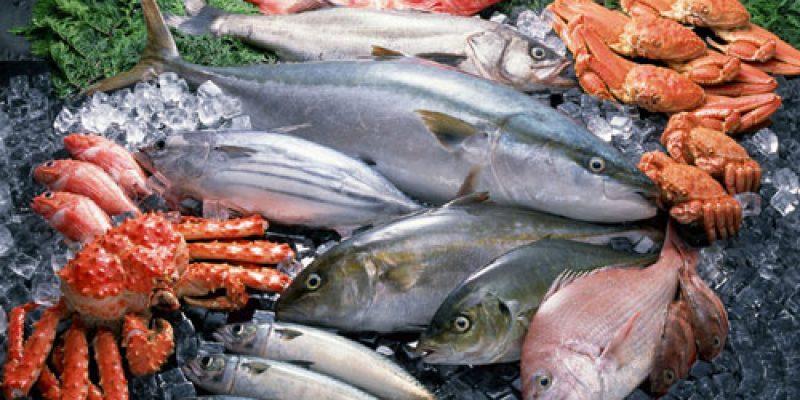 Список съедобных морских рыб с названиями: самые популярные виды