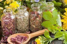 Список трав, помогающих от высокого давления: свойства и противопоказания, применение в домашних условиях, рецепты народной медицины