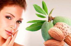 Как применять миндальное масло для кожи лица и тела, рецепты масок для волос, ресниц, а также его полезные свойства